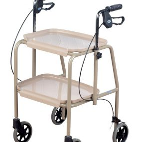 Days Adjustable Indoor Walker Trolley